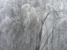 Dobogókő jég 11